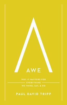 Awe by Paul David Tripp | Journey with Jill